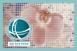 واردات سرامیک و کاشی ,خرید خارجی و ترخیص از گمرک ،ترخیص کاشی ،ترخیص سرامیک ،واردات کاشی و سرامیک از چین ،ترخیص کار کاشی ،هزینه واردات کاشی ،هزینه واردات کاشی و سرامیک ،تعرفه واردات کاشی ،تعرفه گمرکی کاشی ،کاشی و سرامیک وارداتی ،ceramic&tile ،ceramic&tile، import ceramic&tile،قیمت کاشی و سرامیک در ایران،قیمت کاشی در چین ،بازار کاشی و سرامیک چین ،تولیدکنندگان کاشی و سرامیک ،کارخانجات سرامیک و کاشی در چین ،import china،china،import from china ،