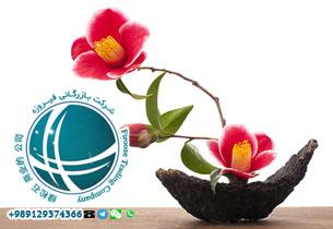 واردات گل مصنوعی ,ترخیص گل و میوه مصنوعی ،واردات انواع گل مصنوعی از چین ،گل های مصنوعی وارداتی از چین ،ترخیص گل مصنوعی از گمرک ،هزینه واردات گل مصنوعی ،سود واردات گل مصنوعی،ترخیص گل مصنوعی ،گل مصنوعی و گلدان ،خرید گل مصنوعی از چین ،گلدان های وارداتی ،واردات انواع دکوریجات از چین ،دکوری های وارداتی از چین ،واردات مجسمه و دکوری از چین ،Artificial Flower،人造花،شرکت واردکننده ی گل مصنوعی ،تاجر گل ،واردات گل ،واردات انواع رز مصنوعی ،گل مصنوعی ،china،import china،واردات از چین ،بازار گل در چین ،قیمت گل مصنوعی در چین ،کد تعرفه گل مصنوعی ،تعرفه گمرکی گل مصنوعی ،