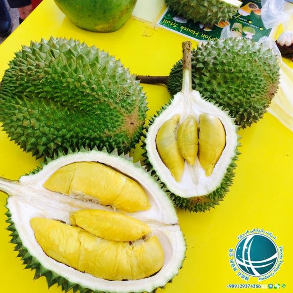 میوه های گرمسیری مالزی ، تنوع بالای میوه در کوالالامپور ،میوه های گرمسیری مالزی ،میوه های مالزی، میوه های گرمسیری مخصوص مالزی، شاه میوه های مالزی، دوریان شاه میوه ی مالزی، رامبوتان، منگوستین ، منگوستین ملکه میوه های مالزی، مانگو یا انبه ، تنوع انبه در مالزی، لانکان ، دراگون فروت ، استار فروت ، خوشمزه ترین میوه های مالزی، شیرینی و دسرهای کوالالامپور , آشنایی با انواع کویح ، شیرینی و کیک های کوالالامپور, شیرینی جات مخصوص کوالالامپور ، کویح شیرینی مخصوص کوالالامپور، اوند اوند شیرینی مخصوص کوالالامپور، کویح تالام نوعی دسر مالایی، دسرهای مخصوص کوالالامپور، غذاهای محلی کوالالامپور , غذاهای گوشتی معروف در مالزی ، غذاهای معروف گوشتی کوالالامپور، معروفترین غذاهای کوالالامپور، غذاهای گیاهی کوالالامپور ، غذاهای دریایی معروف در مالزی، معروف ترین غذاهای دریایی کوالالامپور، انواع خوراک مرغ و ماهی معروف در مالزی، خوراک مردم مالزی , معروف ترین غذاهای کوالالامپور، تنوع غذایی در مالزی، غذاهای حلال محلی در مالزی، غذاهای حلال مالایی، سوشی های مالایی، غذاهای دریایی مالزی، رستوران های مالزی، رستوران های کوالالامپور، مهمترین غذاهای پلویی مالزی , ناسی لماک غذای ملی مالزی ،خوراک مردم مالزی ، غذای اصلی مردم مالزی، ناسی توماتو، ناسی گورنگ ، ناسی کندر، ناسی دگنگ، ناسی لماک، غذای ملی مالزی، ناسی لماک غذای ملی مالزی ، وضعیت تغذیه در کوالالامپور ، آداب و رسوم پخت و پز در کوالالامپور ، غذاهای کوالالامپور، خوراک مردم مالزی، آداب پخت و پز در کوالالامپور ، غذاهای مالزی، وضعیت غذایی مردم کوالالامپور ، رمپا در مالزی، آداب و رسوم غذایی در مالزی، اداب و رسوم غذاخوردن در کوالالامپور، خدمات شهری کوالالامپور برای مسافران و توریست ها ، سطح بهداشت در کوالالامپور ، گرمازدگی در کوالالامپور ، نکات بهداشتی در هنگام سفر به کوالالامپور، سیم کارت های مالایی ، تعرفه هزینه مکالمه در کوالالامپور ، تردد در کوالالامپور , قوانین مالزی , نکات لازم برای اقامت در کوالالامپور ،