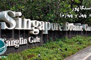 باغ های گیاه شناسی سنگاپور ، نمایشگاه های گل سنگاپور ، باغ گیاه شناسی سنگاپور ، قدیمی ترین پارک ملی سنگاپور، دیدنی ترین مجموعه های گردشگری سنگاپور، موزه گیاهان گرمسیری سنگاپور، مرکز تحقیقات گیاه شناسی سنگاپور، پارک جنگلی گیاه شناسی ینگاپور، باغ ارکیده ملی سنگاپور ، نمایشگاه ارکیده گرمسیری سنگاپور، بزرگترین نمایشگاه ارکیده گرمسیری جهان، نمایشگاه های گل سنگاپور، باغ کودکان ژاکوب بالاس، باغ گیاه شناسی کودکان، باغ های گیاه شناسی سنگاپور، باغ وحش های معروف سنگاپور ، پارک خزندگان و باغ وحش شبانه، پارک خزندگان جارونگ ، گونه های جانوری پارک خزندگان سنگاپور، زیستگاه خزندگان در سنگاپور، باغ وحش های سنگاپور، باغ وحش شبانه سنگاپور، معروف ترین جاذبه های سنگاپور، حیوانات موجود در باغ وحش سنگاپور، فضای باغ وحش سنگاپور، بازدید از باغ وحش شبانه سنگاپور، شرایط بازدید از باغ وحش سنگاپور، باغ پرندگان جورانگ سنگاپور ، باغ های پرندگان سنگاپور، پرندگان موجود در باغ پرندگان جورانگ، گونه های پرنده در باغ پرندگان ، باغ پرندگان در سنگاپور، حیات وحش سنگاپور، بزرگترین باغ پرندگان در آسیا، باغ وحش سنگاپور ، گونه های جانوری سنگاپور ، دیدنی ترین باغ وحش های دنیا، گونه های جانوری باغ وحش سنگاپور ، اورانگوتان باغ وحش سنگاپور ، بازدید از باغ وحش سنگاپور، مناطق تفریحی سنگاپور ، پارک تفریحی اسکیب ، کلوب ساحلی مانا مانا، , پارک های روباز سنگاپور ، امکانات پارک تفریحی اسکیب، کلوب ساحلی مانا مانا ، امکانات تفریحی پارک ساحلی مانا مانا، جاذبه های گردشگری سنگاپور، مناطق گردشگری سنگاپور، دیدنی های سنگاپور، پارک آبی وایلد وایلدوت سنگاپور ، بزرگترین پارک آبی سنگاپور، امکانات تفریحی پارک آبی وایلد وایلدوت، پارک های آبی سنگاپور، بزرگترین پارک های آبی جهان، جدیدترین پارک آبی سنگاپور، مجسمه مرلاین نماد سنگاپور ، پارک مرلاین سنگاپور ، نام قدیمی سنگاپور، پارک مرلاین، خلیج مارینا ، پارک های سنگاپور، مناطق تفریحی سنگاپور ، پارک تفریحی اسکیب ، کلوب ساحلی مانا مانا، , پارک های روباز سنگاپور ، امکانات پارک تفریحی اسکیب، کلوب ساحلی مانا مانا ، امکانات تفریحی پارک ساحلی مانا مانا، جاذبه های گردشگری سنگاپور، مناطق گردشگری سنگاپور، دیدنی های سنگاپور، پارک آبی وایلد وایلدوت سنگاپور ، بزرگترین پارک آبی سنگاپور، امکانات تفریحی پ