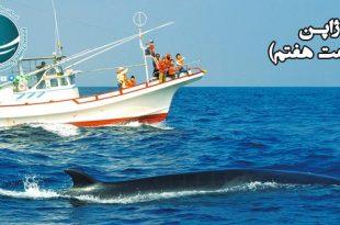 صید نهنگ در ژاپن ، خودکفایی ژاپن در تولید و داد و ستد، صید ماهی در ژاپن، کاربرد نهنگ در تولیدات ژاپن، مهمترین قسمت های بدن نهنگ، علت صید نهنگ در ژاپن، کاربرد چربی نهنگ، میزان مصرف نهنگ در ژاپن، داد و ستد در ژاپن، فرهنگ ژاپنی ها در خودکفایی داد و ستد، آشنایی با فرهنگ مردم ژاپن، حیات وحش ژاپن ، جانوران دریایی ژاپن، پوشش گیاهی و حیات وحش ژاپن، گونه های جانوری ژاپن، محصولات دریایی ژاپن، غذاهای دریایی کشور ژاپن، وضعیت آب و هوای ژاپن , شرایط جوی ژاپن، آب و هوای ژاپن، طوفان های شدید حاره ای ژاپن، تیفون های ژاپن، میزان بارندگی در ژاپن، بارندگی در ژاپن، شرایط آب و هوای ژاپن، شرایط جوی در ژاپن، بارندگی های ژاپن، آشنایی با ژاپن، طوفان های شدید حاره ای در ژاپن، آتشفشان های ژاپن ، قله های آتشفشان و گسل های زلزله در ژاپن، بزرگترین زلزله ژاپن، زلزله کانتو ژاپن، سونامی در ژاپن، سونامی های ژاپن، تسونامی، تسونامی در ژاپن، بلندترین قله های آتشفشان ژاپن، قله های آتشفشان ژاپن، دریاچه های ژاپن، کالدرا، صعود بر قله فوجی، قله فوجی ژاپن، شرایط صعود به قله فوجی، فتح قله فوجی ، کوه های ژاپن، جغرافیای طبیعی ژاپن، جغرافیای ژاپن و تأثیر آن بر فرهنگ مردم ژاپن ، جایگاه جغرافیایی ژاپن، ویژگی های جغرافیایی ژاپن، جغرافیای کشور ژاپن، زلزله در ژاپن، گسل های ژاپن، وضعیت جغرافیایی ژاپن، ویژگی های فرهنگی ژاپن ، فناوری های ژاپن، فناوری های نوین در ژاپن، فناوری های ژاپن، فرهنگ غربی در ژاپن، ویژگی های فرهنگی مردم ژاپن، ویژگی های فرهنگی ژاپنی ها، فناوری های پیشرفته ژاپن، آشنایی با ژاپن ، ژاپن کشوری مقاوم در برابر تغییرات، ژاپن، ، فرهنگ ژاپن، آشنایی با فرهنگ ژآپن، فئودالیسم در ژاپن، تغییر و تحولات ژاپن، سفر به ژاپن، آشنایی با کشورها، اطلاعات کشورها، واردات از چین، خرید از ژاپن، خرید از چین، شرکت بازرگانی، حمل بار، حمل و نقل بین المللی، حمل هوایی، حمل دریایی، کارگو، خرید با ارز دولتی،
