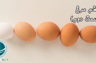 فواید تخم مرغ ، املاح و ویتامین های تخم مرغ، املاح موجود در تخم مرغ ، املاح مهم تخم مرغ ، فواید تخم مرغ ، آشنایی با خواص تخم مرغ، آشنایی با خواص تخم مرغ ، منابع غذایی موجود در تخم مرغ، تخم مرغ و خواص آن ، خواص تخم مرغ ، منابع غذایی موجود در تخم مرغ، پروتئین موجود در تخم مرغ، اسیدآمینه موجود در تخم مرغ، ارزش پروتئینی تخم مرغ ، ویتامین های موجود در تخم مرغ ، ارزش غذایی تخم مرغ، خواص موجود در تخم مرغ ، واردات از چین، خرید از چین، واردات کالا از چین، واردات کالا، حمل و نقل بین المللی، حمل بار از چین، ثبت سفارش کالا، شرکت بازرگانی فیروزه، شرکت بازرگانی در مشهد،