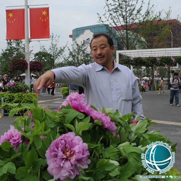 مناسبت ها و رویدادها ,چین, موقعیت جغرافیایی شهر شانگهای, شهر شانگهای, شانگهای, بندر شانگهای, رود یانگ تسه, پرجمعیت ترین شهر چین, بزرگترین بندر جهان, مساحت شانگهای, شهر پوکسی, شهر پودانگ, آب و هوای شانگهای, جمعیت شانگهای, پرجمعیت ترین شهر جهان, ادیان شانگهای, اقوام شانگهای, شهرهای دیدنی چین, مهمترین بندر تجاری, بزرگترین بندر تجاری دنیا, سفر به شانگهای, زندگی در شانگهای, تحصیل در شانگهای, کار در شانگهای, مشاغل شانگهای, مکان های دیدنی شانگهای, مکان های تفریحی شانگهای, حمل و نقل در شانگهای, فرودگاه های شانگهای, مراکز خرید شانگهای ,مساجد شانگهای, کلیساهای شانگهای, معابد شانگهای, موزه های شانگهای, شرکت بازرگانی فیروزه, صادرات, واردات, حمل, حمل هوایی, حمل دریایی, ترخیص, خرید کالا از چین, واردات کالا از چین, واردات مواد شیمیایی, واردات ماشین آلات صنعتی, واردات دستگاه های خطوط تولید, خرید کالا از شانگهای, واردات کالا از شانگهای,