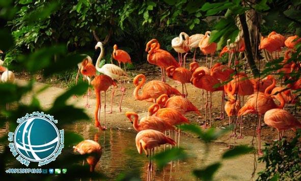 پارکها و مناطق طبیعی 6,چین, موقعیت جغرافیایی شهر گوانگ ژو, شهر گوانگ ژو, گوانگ جو, گوانگ ژو, دیدنی های گوانگ ژو, بازارهای گوانگ ژو, شهرهای دیدنی چین, سفر به گوانگ ژو, زندگی در گوانگ ژو, تحصیل در گوانگ ژو, کار در گوانگ ژو, مکان های دیدنی گوانگ ژو, مراکز خرید گوانگ ژو, شرکت بازرگانی فیروزه, صادرات, واردات, حمل, حمل هوایی, حمل دریایی, ترخیص, خرید کالا از چین, واردات کالا از چین, واردات مواد شیمیایی, واردات ماشین آلات صنعتی, واردات دستگاه های خطوط تولید, خرید کالا از گوانگ ژو, واردات کالا از گوانگ ژو,